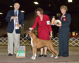 Best of Breed Specialty